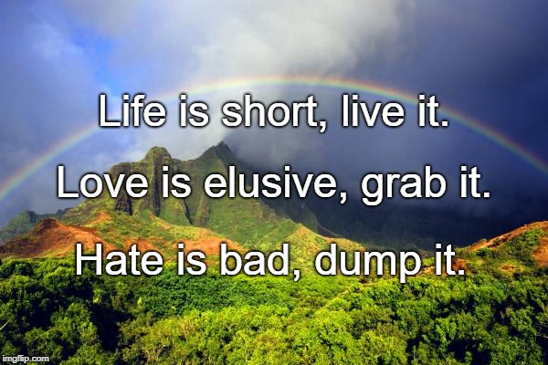 rainbow love | Life is short, live it. Hate is bad, dump it. Love is elusive, grab it. | image tagged in rainbow love | made w/ Imgflip meme maker