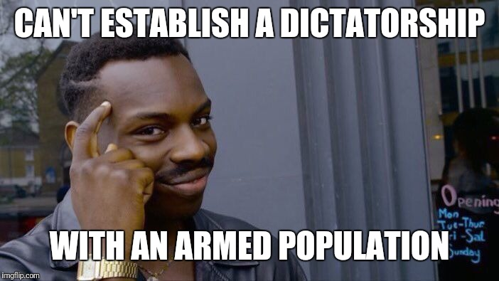 Roll Safe Think About It Meme | CAN'T ESTABLISH A DICTATORSHIP WITH AN ARMED POPULATION | image tagged in memes,roll safe think about it | made w/ Imgflip meme maker