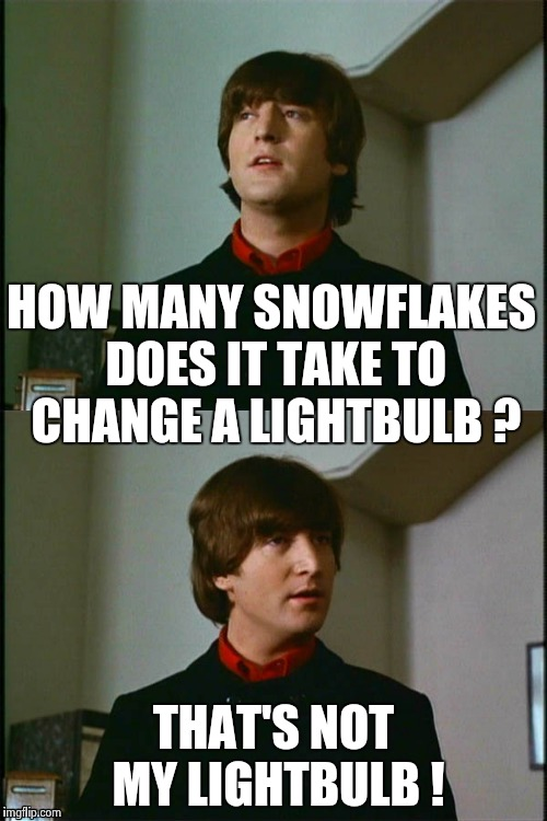 Philosophical John | HOW MANY SNOWFLAKES DOES IT TAKE TO CHANGE A LIGHTBULB ? THAT'S NOT MY LIGHTBULB ! | image tagged in philosophical john | made w/ Imgflip meme maker