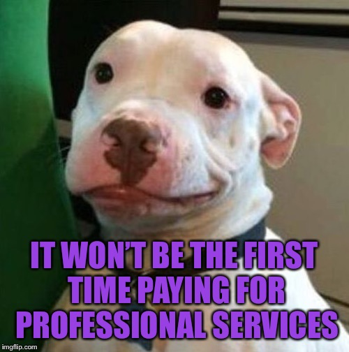 Awkward Dog | IT WON'T BE THE FIRST TIME PAYING FOR PROFESSIONAL SERVICES | image tagged in awkward dog | made w/ Imgflip meme maker