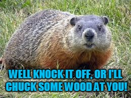 WELL KNOCK IT OFF, OR I'LL CHUCK SOME WOOD AT YOU! | made w/ Imgflip meme maker