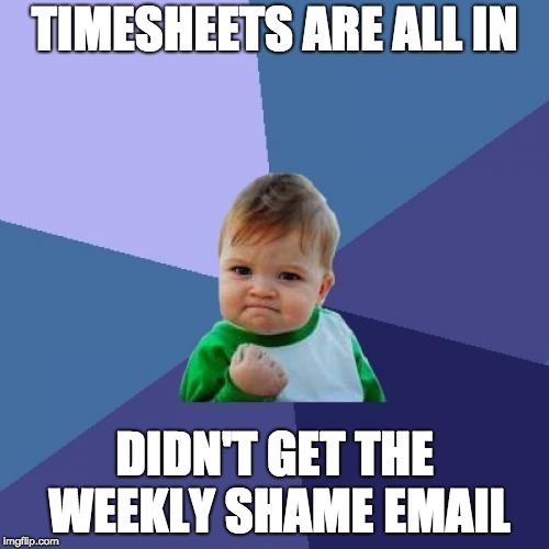 Success Kid | TIMESHEETS ARE ALL IN DIDN'T GET THE WEEKLY SHAME EMAIL | image tagged in memes,success kid,timesheet,timesheet reminder,timesheets | made w/ Imgflip meme maker
