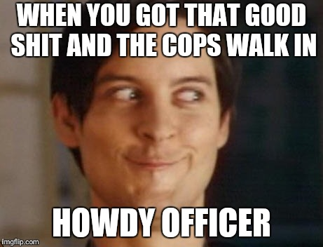 Spiderman Peter Parker Meme | WHEN YOU GOT THAT GOOD SHIT AND THE COPS WALK IN HOWDY OFFICER | image tagged in memes,spiderman peter parker,scumbag | made w/ Imgflip meme maker