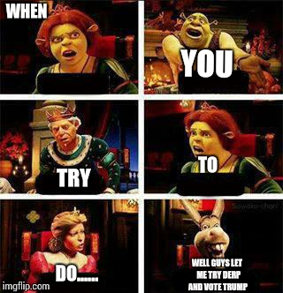 Shrek | WHEN YOU TRY TO DO...... WELL GUYS LET  ME TRY DERP AND VOTE TRUMP | image tagged in shrek,trump,derp,donkey from shrek | made w/ Imgflip meme maker