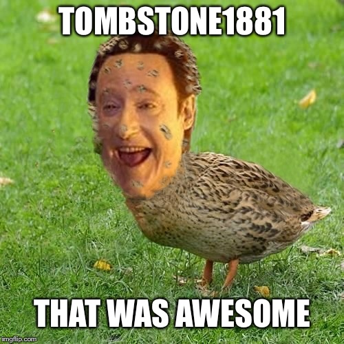 The Data Duck | TOMBSTONE1881 THAT WAS AWESOME | image tagged in the data duck | made w/ Imgflip meme maker