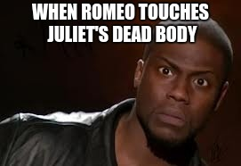 Kevin Hart The Hell Meme | WHEN ROMEO TOUCHES JULIET'S DEAD BODY | image tagged in memes,kevin hart the hell | made w/ Imgflip meme maker