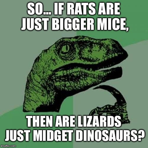 Philosoraptor Meme | SO... IF RATS ARE JUST BIGGER MICE, THEN ARE LIZARDS JUST MIDGET DINOSAURS? | image tagged in memes,philosoraptor | made w/ Imgflip meme maker