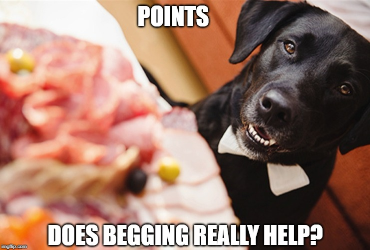 But I only need a few more points... | POINTS DOES BEGGING REALLY HELP? | image tagged in memes | made w/ Imgflip meme maker