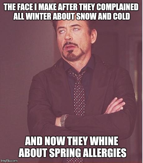 Face You Make Robert Downey Jr Meme | THE FACE I MAKE AFTER THEY COMPLAINED ALL WINTER ABOUT SNOW AND COLD AND NOW THEY WHINE ABOUT SPRING ALLERGIES | image tagged in memes,face you make robert downey jr,whiners | made w/ Imgflip meme maker