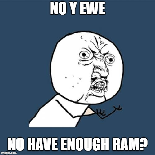 Y U No Meme | NO Y EWE NO HAVE ENOUGH RAM? | image tagged in memes,y u no | made w/ Imgflip meme maker