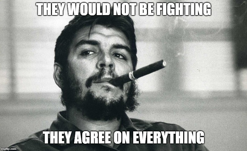 Che | THEY WOULD NOT BE FIGHTING THEY AGREE ON EVERYTHING | image tagged in che | made w/ Imgflip meme maker