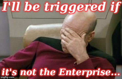 Captain Picard Facepalm Meme | I'll be triggered if it's not the Enterprise... | image tagged in memes,captain picard facepalm | made w/ Imgflip meme maker