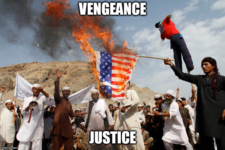 ironic flag burning | VENGEANCE JUSTICE | image tagged in ironic flag burning,anti-american,anti american,protest,protests,anti bigotry | made w/ Imgflip meme maker