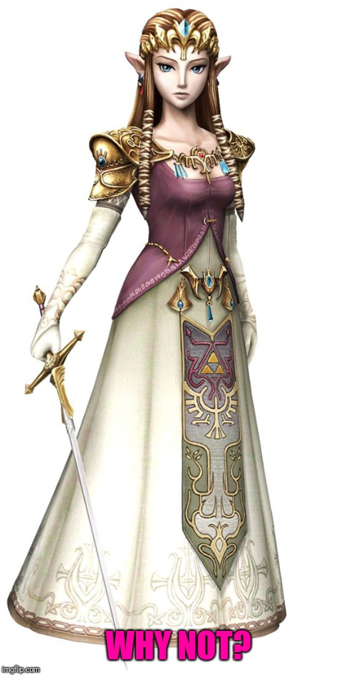 Princess Zelda | WHY NOT? | image tagged in princess zelda | made w/ Imgflip meme maker