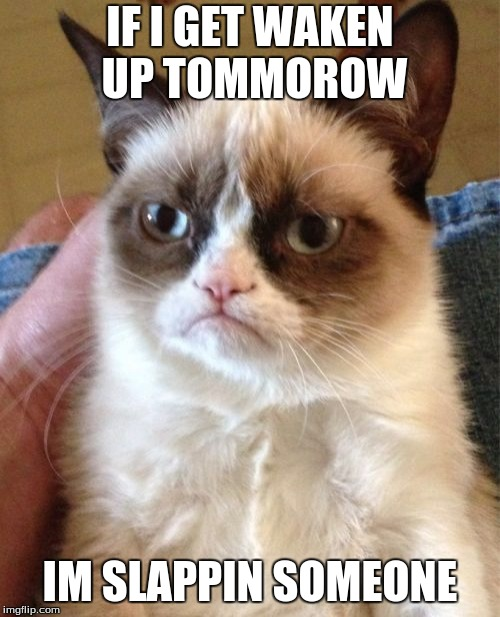Grumpy Cat Meme | IF I GET WAKEN UP TOMMOROW IM SLAPPIN SOMEONE | image tagged in memes,grumpy cat | made w/ Imgflip meme maker