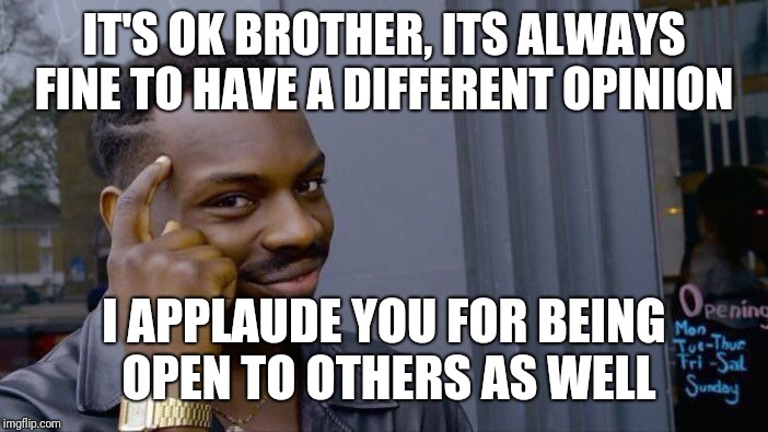 Roll Safe Think About It Meme | IT'S OK BROTHER, ITS ALWAYS FINE TO HAVE A DIFFERENT OPINION I APPLAUDE YOU FOR BEING OPEN TO OTHERS AS WELL | image tagged in memes,roll safe think about it | made w/ Imgflip meme maker