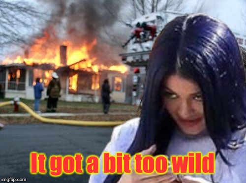 Disaster Mima | It got a bit too wild | image tagged in disaster mima,memes | made w/ Imgflip meme maker