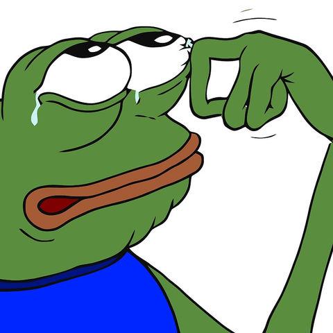 pepe happy crying sad Blank Template - Imgflip