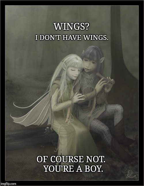 The Dark Crystal | WINGS? I DON'T HAVE WINGS. OF COURSE NOT.  YOU'RE A BOY. | image tagged in wings,muppets,dark crystal,jen,the muppets | made w/ Imgflip meme maker
