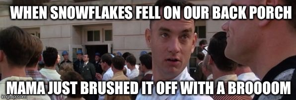 Snowflakes? | WHEN SNOWFLAKES FELL ON OUR BACK PORCH MAMA JUST BRUSHED IT OFF WITH A BROOOOM | image tagged in gump broomith,mama brushed off with a broom,forrest gump meme,memes | made w/ Imgflip meme maker