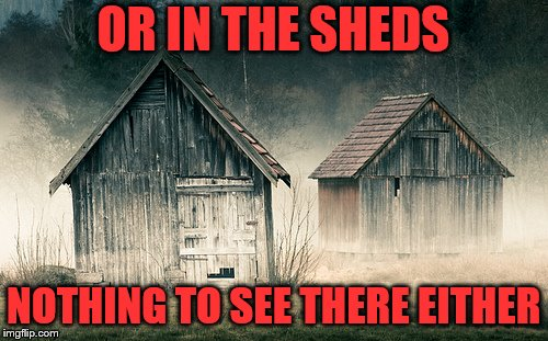 OR IN THE SHEDS NOTHING TO SEE THERE EITHER | made w/ Imgflip meme maker