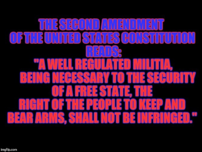 THE SECOND AMENDMENT OF THE UNITED STATES CONSTITUTION | . | image tagged in the second amendment of the united states constitution | made w/ Imgflip meme maker