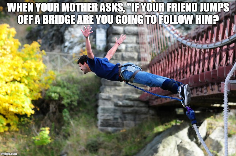 "Bunjee jumping | WHEN YOUR MOTHER ASKS, ""IF YOUR FRIEND JUMPS OFF A BRIDGE ARE YOU GOING TO FOLLOW HIM? 