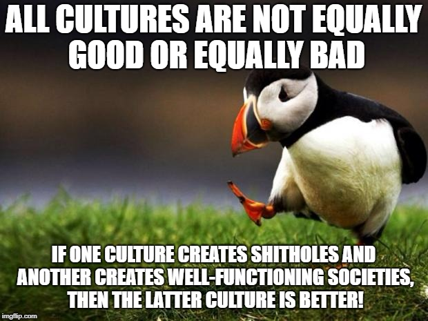 If you move to my country because your own country is a hellhole, don't bring your culture along. It won't work here either. | ALL CULTURES ARE NOT EQUALLY GOOD OR EQUALLY BAD IF ONE CULTURE CREATES SHITHOLES AND ANOTHER CREATES WELL-FUNCTIONING SOCIETIES, THEN THE L | image tagged in memes,unpopular opinion puffin | made w/ Imgflip meme maker