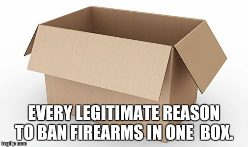 Empty Cardboard Box | EVERY LEGITIMATE REASON TO BAN FIREARMS IN ONE  BOX. | image tagged in empty cardboard box | made w/ Imgflip meme maker