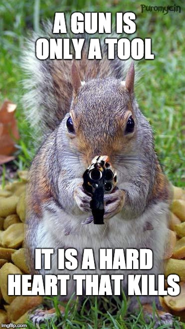 funny squirrels with guns (5) | ​A GUN IS ONLY A TOOL IT IS A HARD HEART THAT KILLS | image tagged in funny squirrels with guns 5 | made w/ Imgflip meme maker