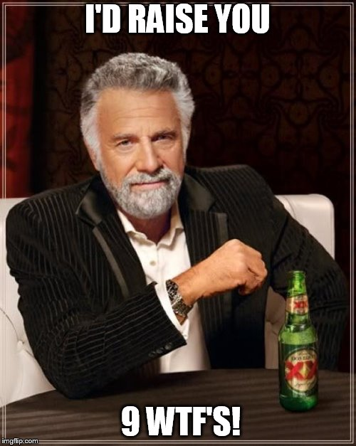 The Most Interesting Man In The World Meme | I'D RAISE YOU 9 WTF'S! | image tagged in memes,the most interesting man in the world | made w/ Imgflip meme maker