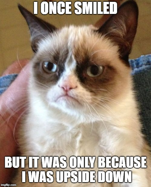 Grumpy Cat Meme | I ONCE SMILED BUT IT WAS ONLY BECAUSE I WAS UPSIDE DOWN | image tagged in memes,grumpy cat | made w/ Imgflip meme maker