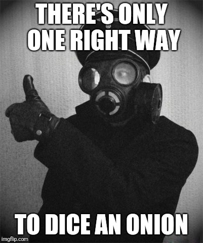 Stop Crying! | THERE'S ONLY ONE RIGHT WAY TO DICE AN ONION | image tagged in gas masked nazi,onion,right way,chopping,fascism,food | made w/ Imgflip meme maker