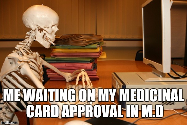 Waiting on medical cannabis card | ME WAITING ON MY MEDICINAL CARD APPROVAL IN M.D | image tagged in cannabis | made w/ Imgflip meme maker