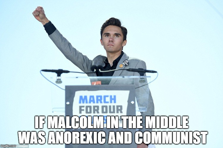 IF MALCOLM IN THE MIDDLE WAS ANOREXIC AND COMMUNIST | image tagged in heil david hogg | made w/ Imgflip meme maker
