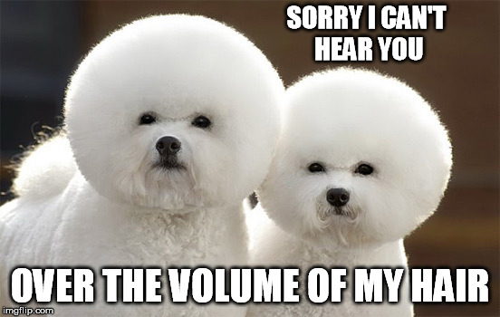 SORRY I CAN'T HEAR YOU OVER THE VOLUME OF MY HAIR | made w/ Imgflip meme maker