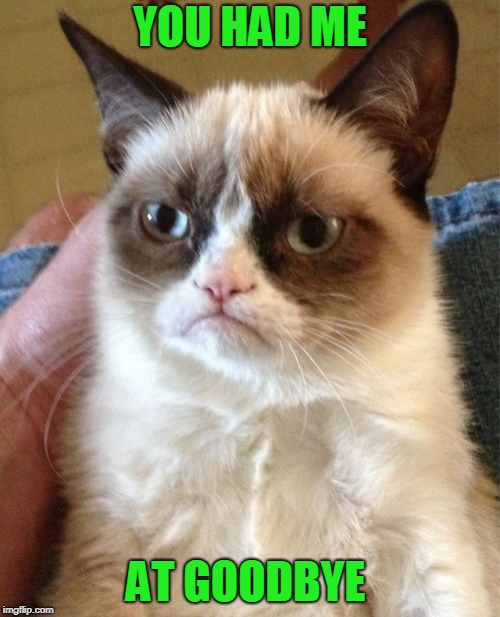 You're more tolerable when you're not present. | YOU HAD ME AT GOODBYE | image tagged in memes,grumpy cat | made w/ Imgflip meme maker