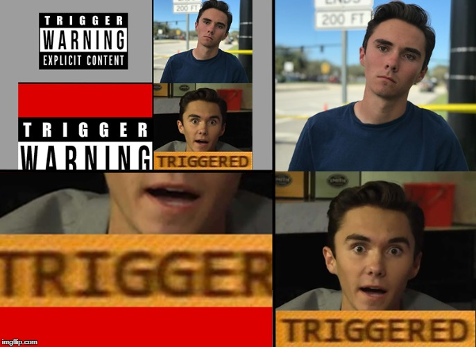 Meta Triggering | image tagged in meta,triggered,trigger,trigger warning,gun control,david hogg | made w/ Imgflip meme maker