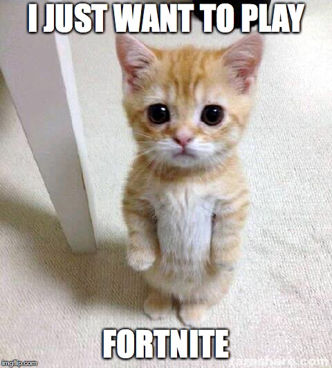 Cute Cat Meme | I JUST WANT TO PLAY FORTNITE | image tagged in memes,cute cat | made w/ Imgflip meme maker