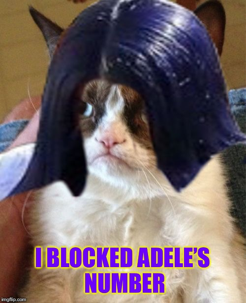 Grumpy Mima | I BLOCKED ADELE'S NUMBER | image tagged in grumpy mima | made w/ Imgflip meme maker