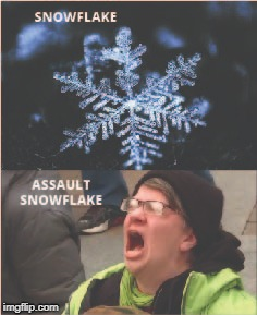 Assault snowflake . . .  | image tagged in snowflakes,snowflake,special snowflake | made w/ Imgflip meme maker