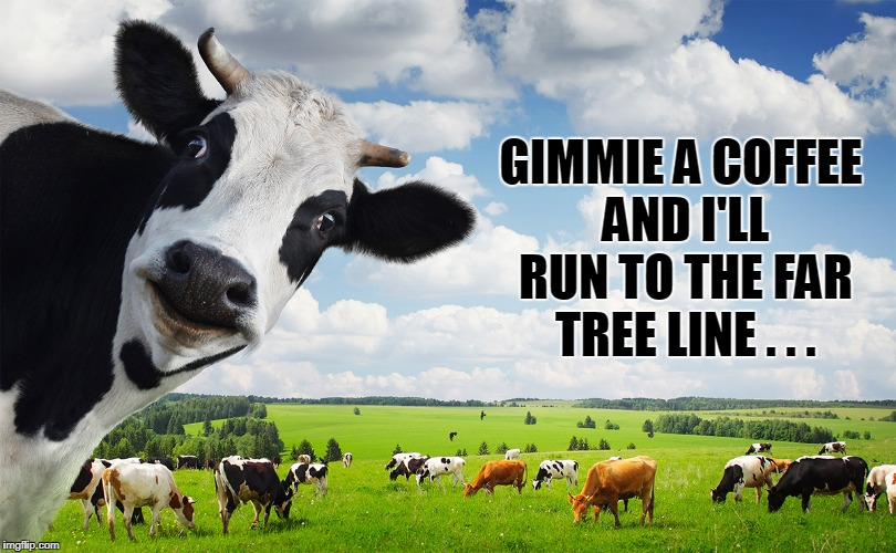 GIMMIE A COFFEE AND I'LL RUN TO THE FAR TREE LINE . . . | made w/ Imgflip meme maker
