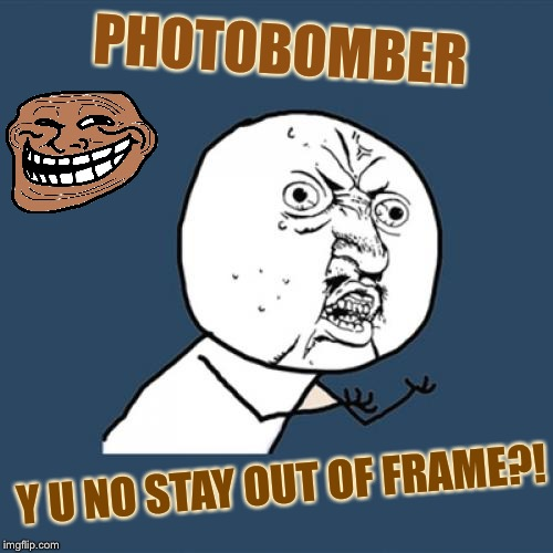Y U No Meme | PHOTOBOMBER Y U NO STAY OUT OF FRAME?! | image tagged in memes,y u no | made w/ Imgflip meme maker