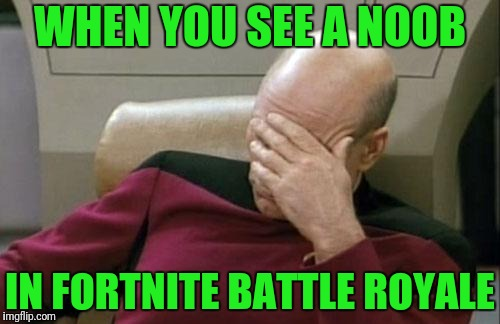 Captain Picard Facepalm Meme | WHEN YOU SEE A NOOB IN FORTNITE BATTLE ROYALE | image tagged in memes,captain picard facepalm | made w/ Imgflip meme maker