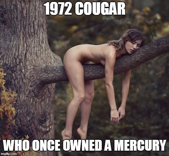 1972 COUGAR WHO ONCE OWNED A MERCURY | made w/ Imgflip meme maker