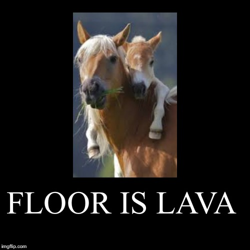 FLOOR IS LAVA | | image tagged in funny,demotivationals | made w/ Imgflip demotivational maker