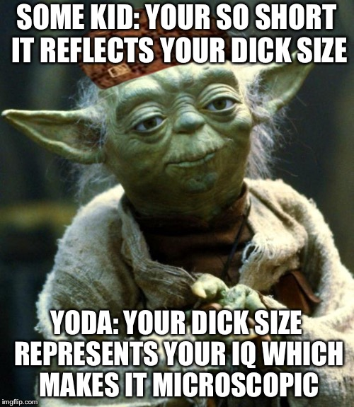Star Wars Yoda Meme | SOME KID: YOUR SO SHORT IT REFLECTS YOUR DICK SIZE YODA: YOUR DICK SIZE REPRESENTS YOUR IQ WHICH MAKES IT MICROSCOPIC | image tagged in memes,star wars yoda,scumbag | made w/ Imgflip meme maker