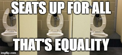 bathroom | SEATS UP FOR ALL THAT'S EQUALITY | image tagged in bathroom | made w/ Imgflip meme maker