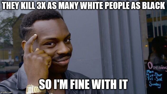 Roll Safe Think About It Meme | THEY KILL 3X AS MANY WHITE PEOPLE AS BLACK SO I'M FINE WITH IT | image tagged in memes,roll safe think about it | made w/ Imgflip meme maker