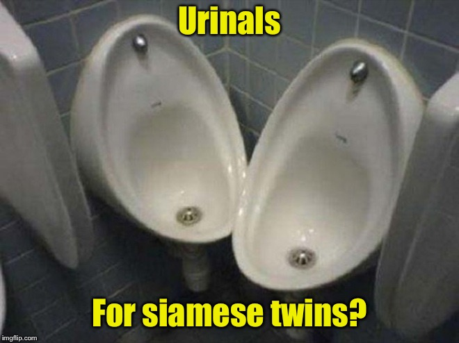 You had one job . . . | Urinals For siamese twins? | image tagged in dumb urinals,you had one job,twins | made w/ Imgflip meme maker